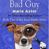 Book Review: To Catch a Bad Guy by Marie Astor